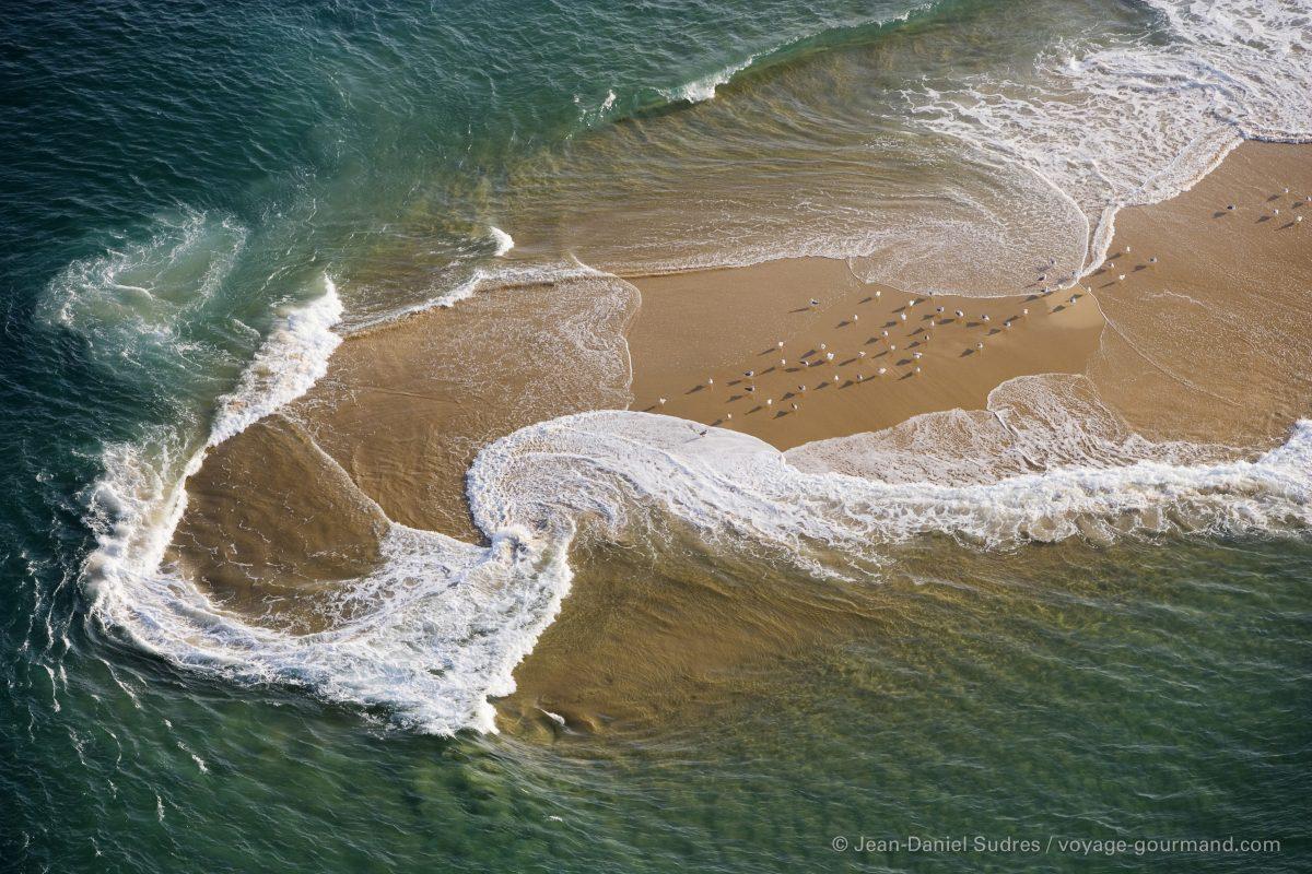 Banc de sable au banc d'Arguin, Bassin d'Arcachon / Sandbank, Banc d'Arguin National Park, Arcachon bay