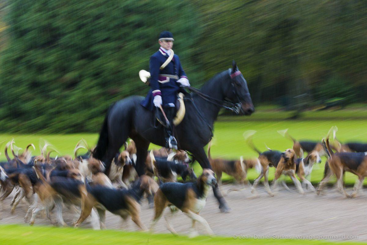 Château de Cheverny: Départ pour la chasse à courre