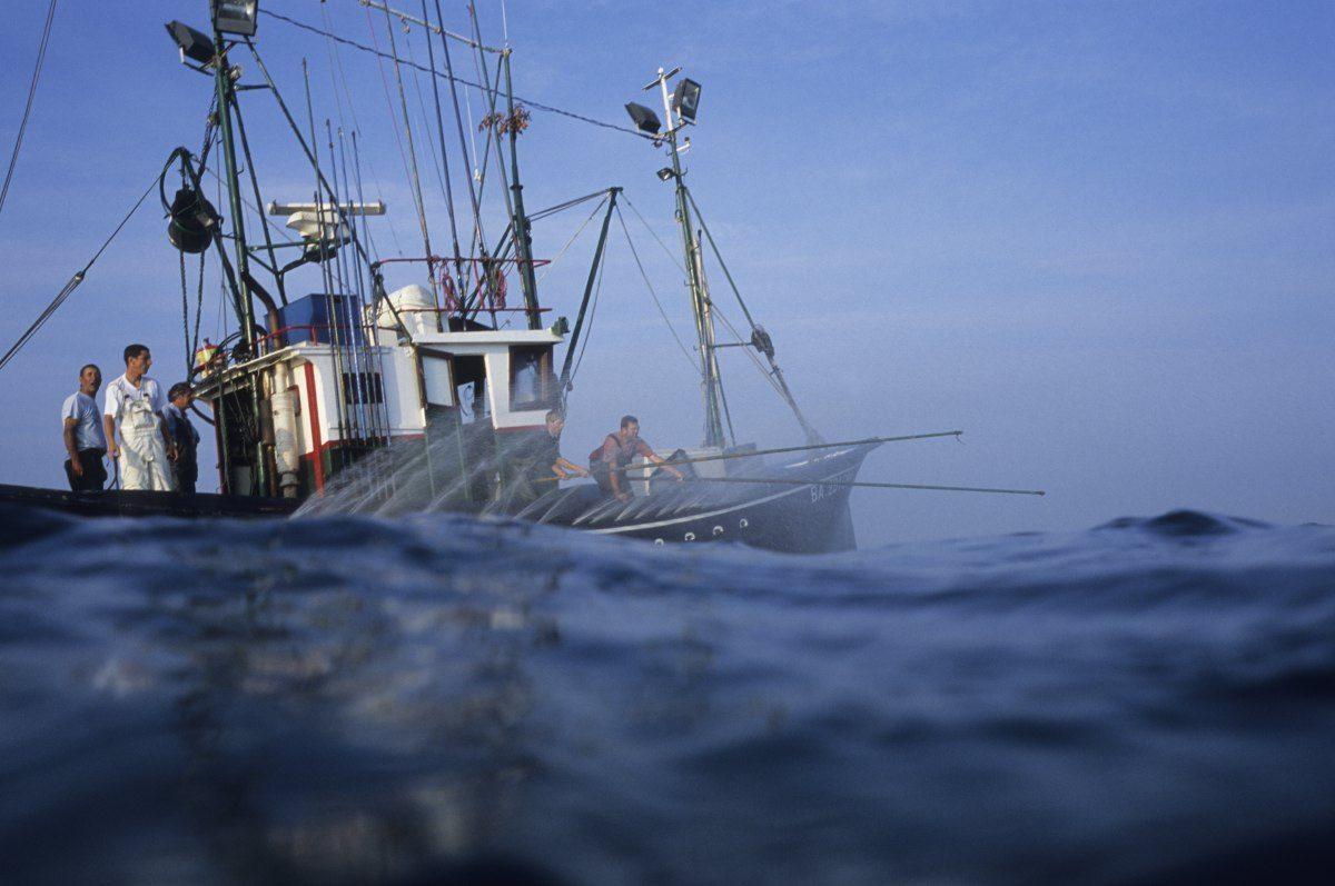 Pêche au thon à la canne, Saint-Saint-de-Luz