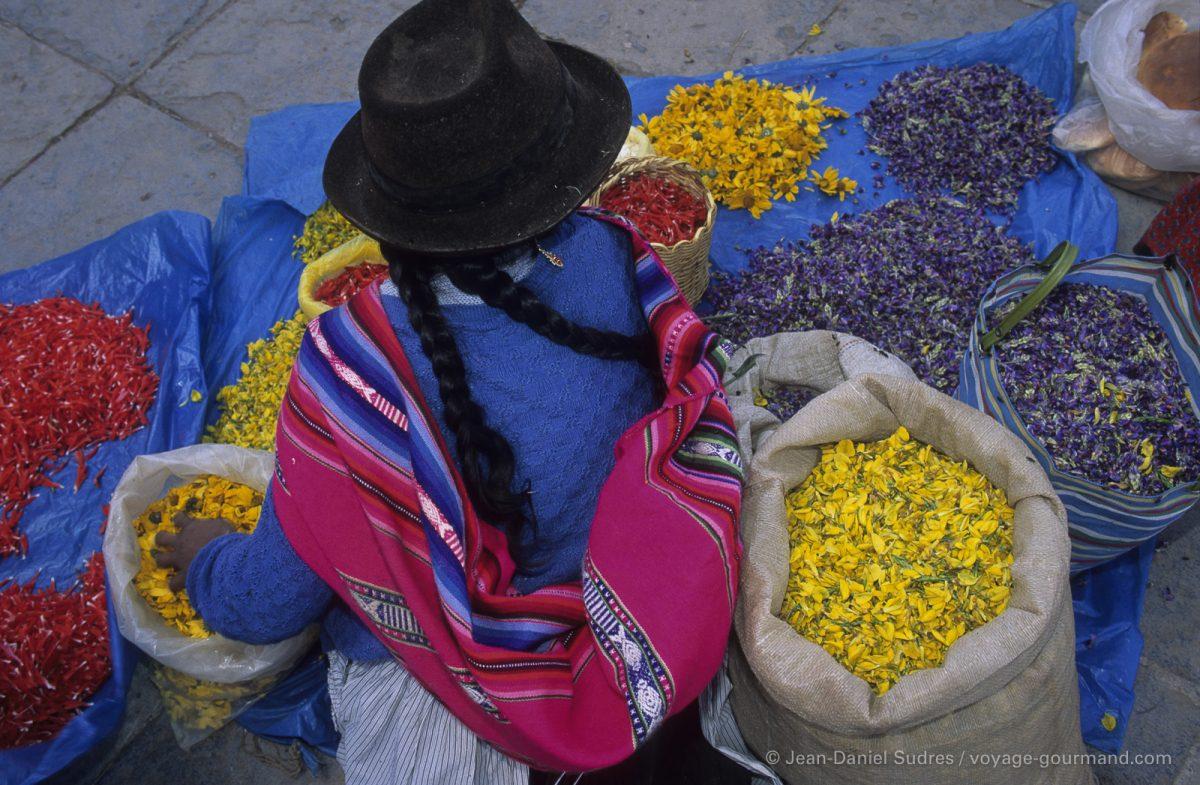 Indienne vendant des fleurs, Cuzco, Pérou